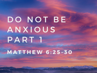 Do Not Be Anxious – Part 1 (Matthew 6:25-30)